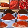Herbs and spices bulk seasoning wholesaler in China best supplier in Alibaba
