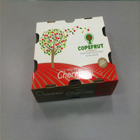 Hot-sale Corrugated cherry packaging Cardboard Boxes