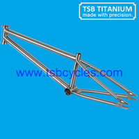 """bmx bicycle frame titanium bike frame 20"""" TSB-BM1101"""