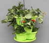 Home garden alibaba com online shopping butterfly shaped plastic planter