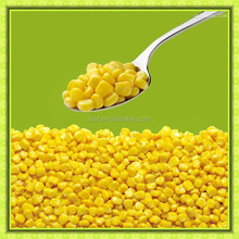 iqf frozen sweet corn can be exported to Iran