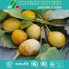 Ginkgo Biloba Extract/Ginkgo Biloba Extract Powder/Ginkgo Biloba