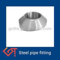 pipe fittings weldolet for tube ANSI B16.11