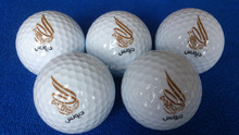 Nide factory Wholesales high quality range golf ball & practice golf ball