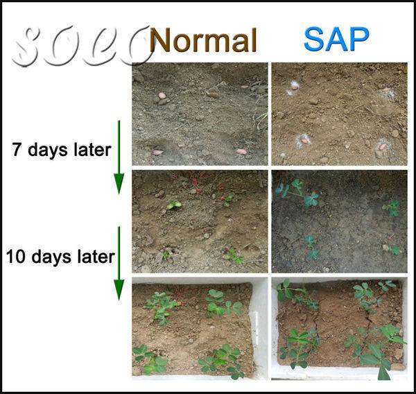 Potassium SAP with good water retaining capacity