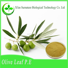 Free sample olive extract/olive powder/olive leaf extract in bulk