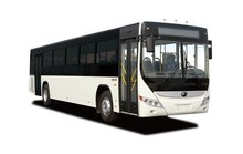 City Bus, Public Transport Vehicle (Yutong, Kinglong, Sunlong, Higer ... )