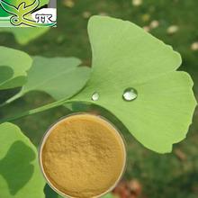 Favorites Compare Original Manufacture Natural Ginkgo Biloba Leaf Extract 24%/6%<1ppm