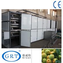 China best quality tunnel belt hot air machine for dark plum/factory price