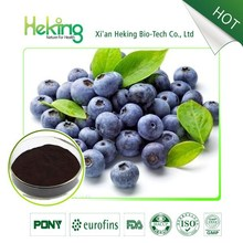 High quality Bilberry extract / anthocyanidin 25%