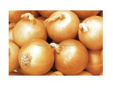 2015 new crop yellow onion