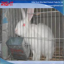Build Aluminum Rabbit Cage In Kenya Farm