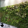 Artificial plants outdoor green wall , foliage wall decoration , fern wall decore plastic plant