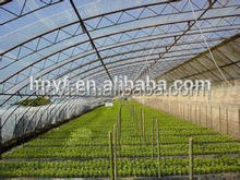 Clear plastic agriculture greenhouse covering film with UV
