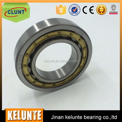 Series NU Full Complement Cylindrical Roller Bearing NJ1012M Bearing