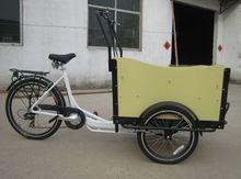 Denmark nice three wheel electric cargobike
