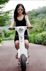 Hot electric tricycle two wheels e-bike for fun