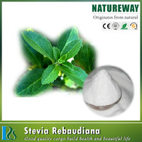 Hot Sell stevia dry leaves