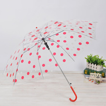 wholesale Adult transparent umbrella multicolor green polka dot automatic umbrella Straight umbrella