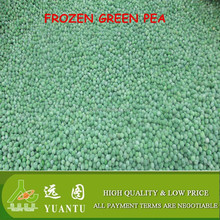 iqf green pea vegetables and fruits from china