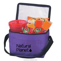 Free sample popular cooler bags for frozen food