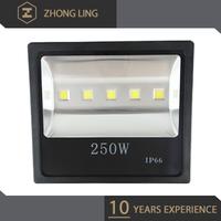 Aluminum Die Casting new 250w led flood light