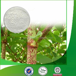 Natural & pure Polygonum Cuspidatum Root Extract with competitive price, factory supply Polydatin, Giant Knotweed Extract