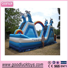 Outdoor giant inflatable trampoline sliding, Double rainbow inflatable dolphin slide