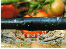 Drip irrigation for vegetable