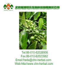 grão de café verde extrato natural perder o peso da cápsula