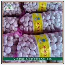 fresh natural white garlic 500g garlic pack black garlic