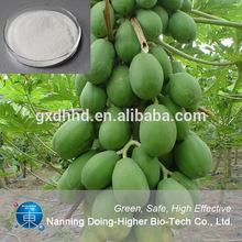 natural de la planta la papaína enzima para la venta