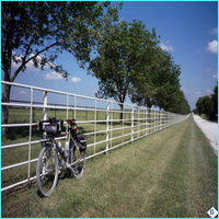 hot sale hot dipped galvanized farm fence with competitive