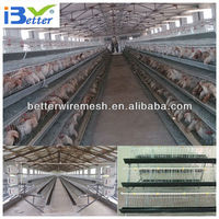 New Design BT factory A-96 chicken farm cage (Welcome to Visit my factory)