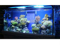 PMMA Plexiglass Wall Hanged Acrylic Reef Aquarium