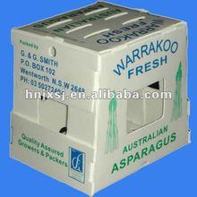 PP Corrugated Vegetable Packaging Box