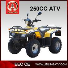 Hot Sale Quad Bike 250cc With EEC