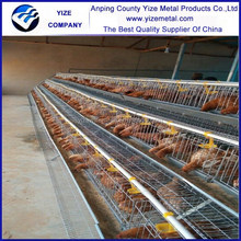 china manufacturer Cage Equipment for Breeders Housing