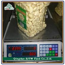 100 % Best Quality Fresh peeled garlic cloves