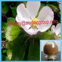 98% podophyllum resina, Podophylline 9000 - 55 - 9
