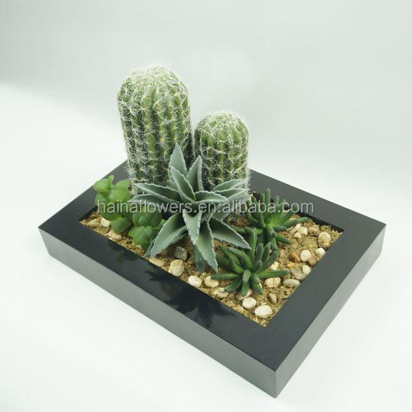 d coration int rieure plantes artificielles cactus et succulentes s rie avec oblong pot l 39 autre. Black Bedroom Furniture Sets. Home Design Ideas