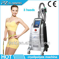 2014 top machine freezing fat to lose weight PZ806/CE popular in Brazil,USA