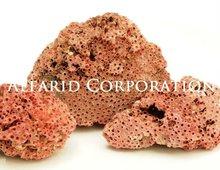 Sea Corals Natural Red Rough