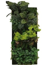 Hot sell Artificial grass wall Hedge Patio Plant for Decor artificial green wall