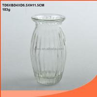 Beautiful glass garden flower pot with stripe pattern