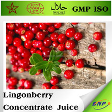 factory price Lingonberry fruit Concentrate Juice