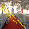 pig farrowing cage ,breeding pig cage ,pig cage equipment