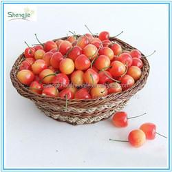 Artificial decoration cherry fruit