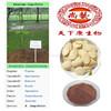 Penawar Putih Pakau Powder /Pasak Bumi Extract /Tongkat Ali Extract Powder / Eurycoma longifolia Root Extract
