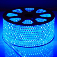 CE&RoHS 12V Waterproof Flexible LED Strips Light SMD 5050 Blue Smart Lighting 60leds